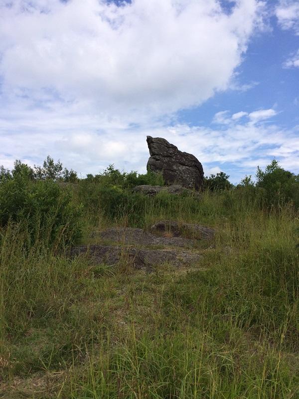 烏帽子岩、ひよこ岩